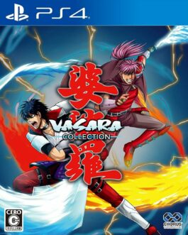New PS4 Vasara collection JAPAN